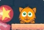 Katzenleckerlis