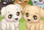Spiel Labrador versorgen