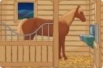Ausgang im Pferdestall finden