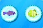 Spiel Fische suchen